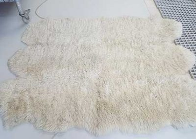6 Piece Sheepskin Hide