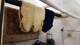 Drying a Sheepskin Rug